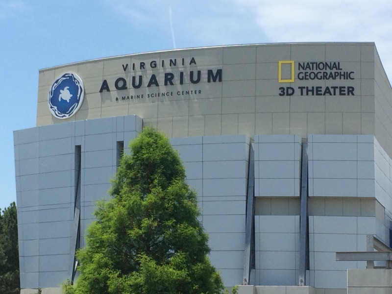Virginia Aquarium (14)