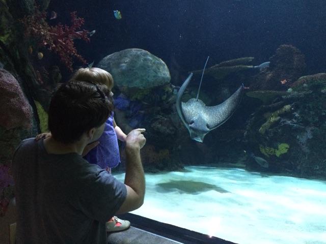 Virginia Aquarium (5)