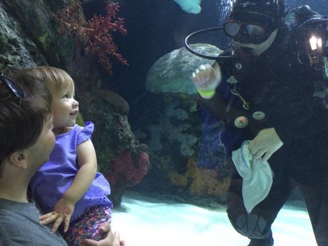 Virginia Aquarium (6)