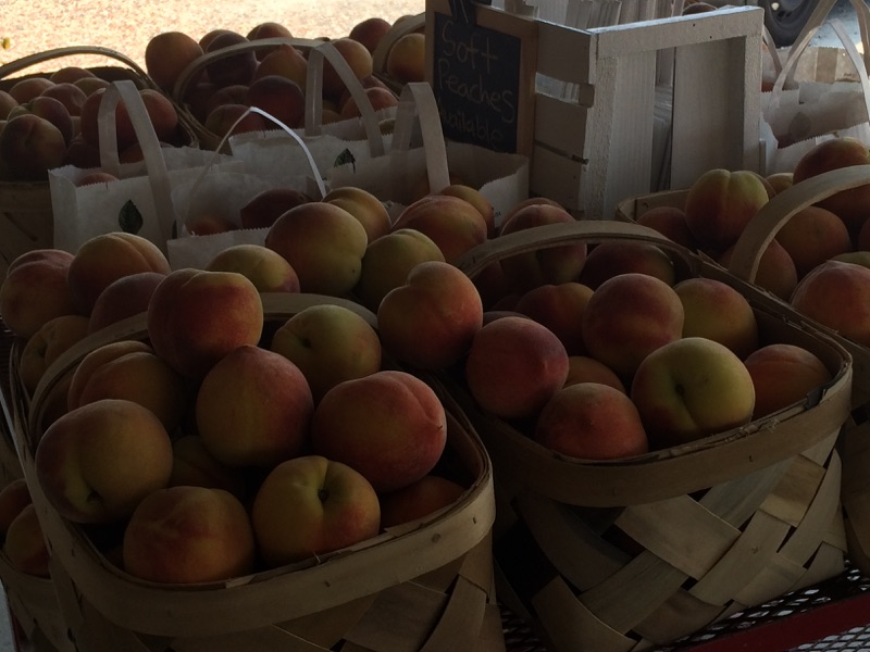 Virginia Farmstand (6)