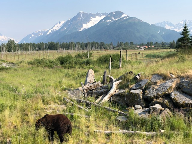 Alaska 2019 (108)